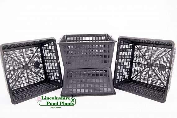 19cm basket - 2 Ltr Basket - Additions to plants - pond plants - water plants-0